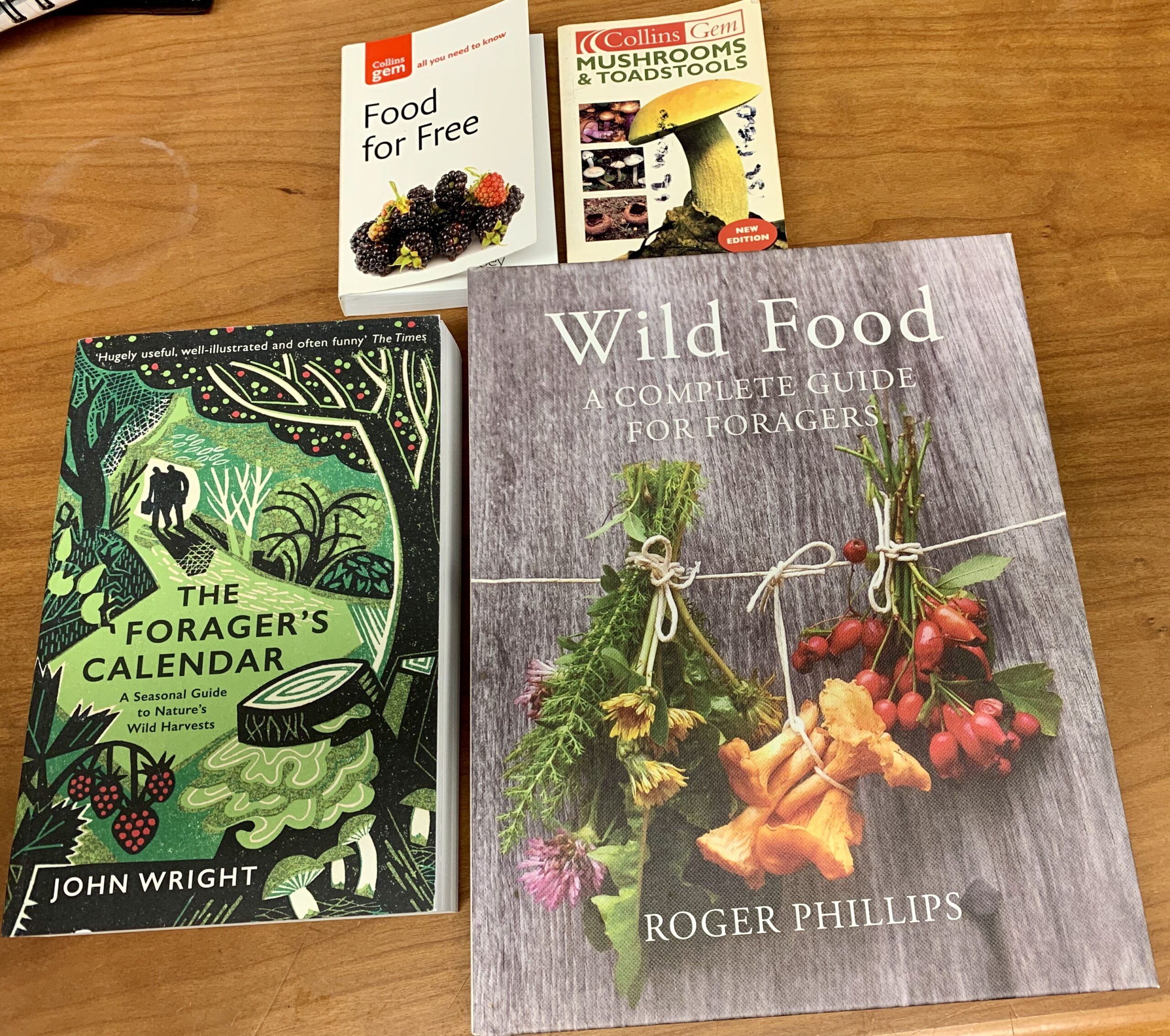 FORAGING READS